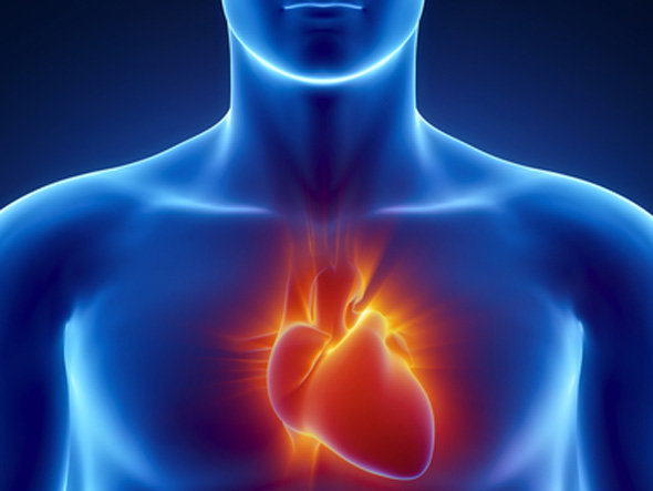 new-film-sheds-doubt-on-link-between-heart-disease-and-cholesterol